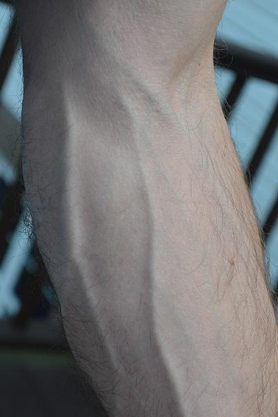 forearm veins, huge veins, bodybuilder veins,