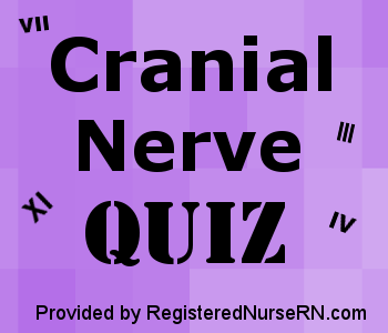 list of cranial nerves in order
