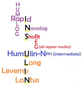 Insulin-mnemonic