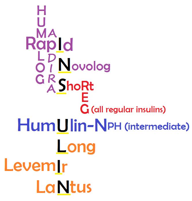 Diabetes Mellitus NCLEX Review Notes Medications & Nursing