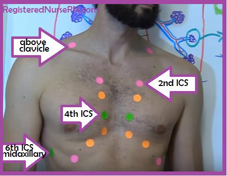 lung auscultation points, lung auscultation, lung sounds