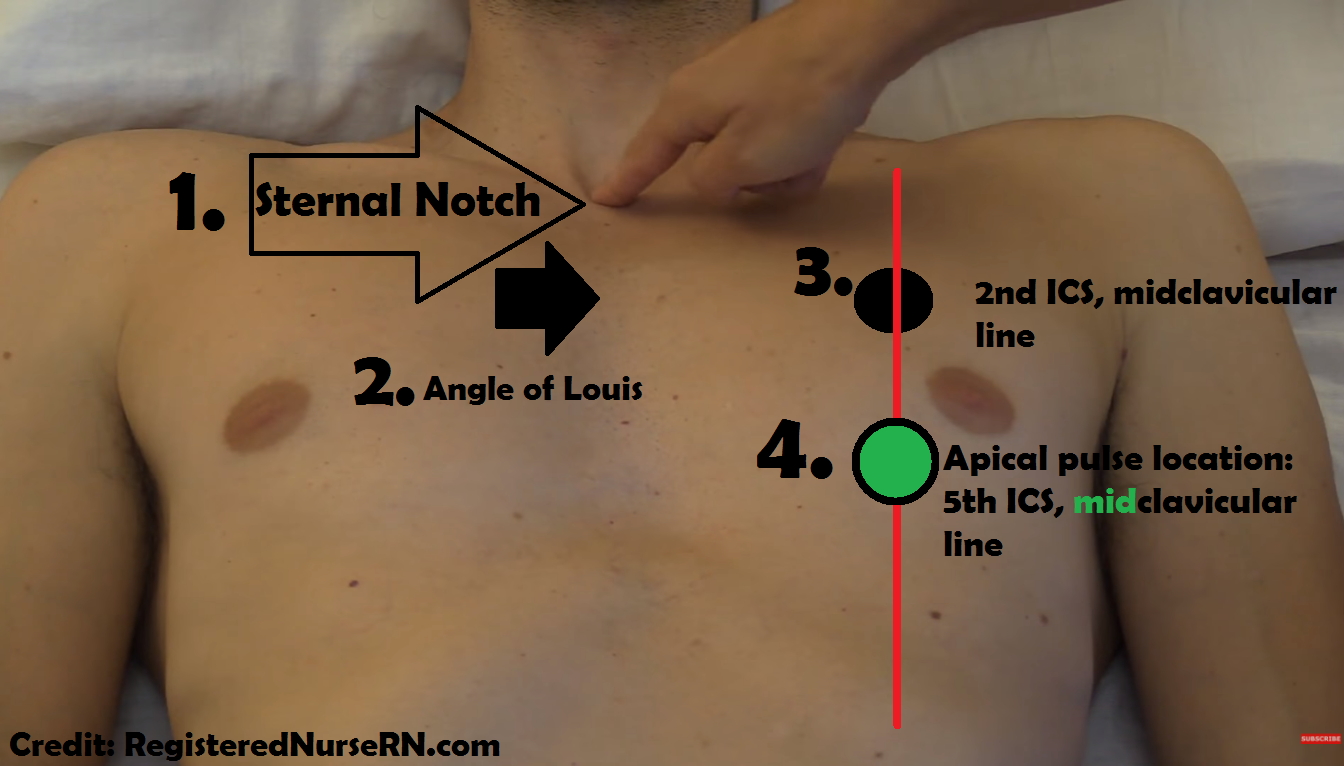apical pulse nursing apical pulse assessment and location