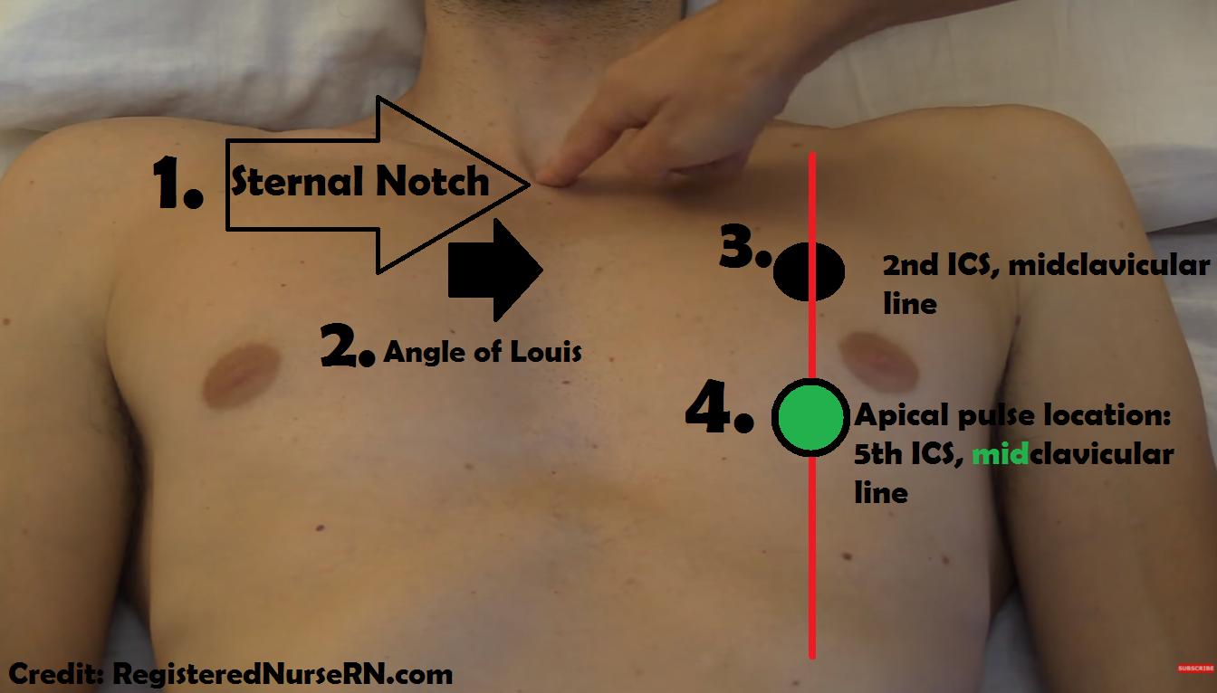 apical pulse, location, assessment, site, nursing