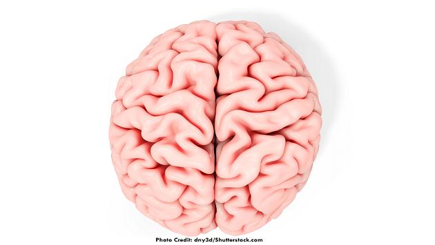 right side of brain, left side of brain, function, nclex, nursing, brain injury