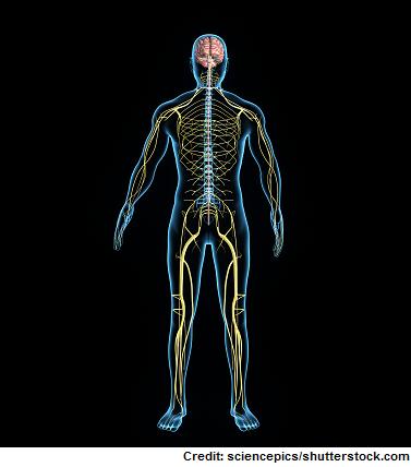 guillain barre syndrome, gbs, nursing, intervention, quiz, nclex