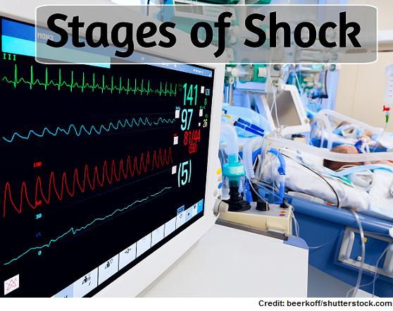 stage of shock, nclex, nursing, initial, progressive, compensatory, refractory, cardiogenic, septic, neurogenic