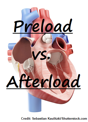 preload, afterload, nursing, cardiac, heart, quiz