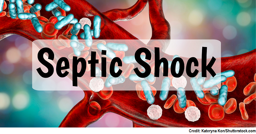 septic shock, sepsis, nclex, questions, quiz, shock