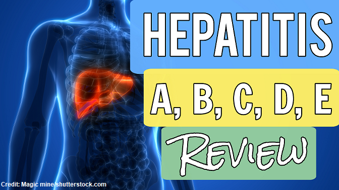 hepatitis, nclex, questions, quiz, nursing, a, b, c, e, viral hepatitis