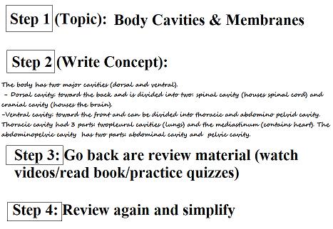 anatomy study tips, how to study for anatomy, the feynman technique