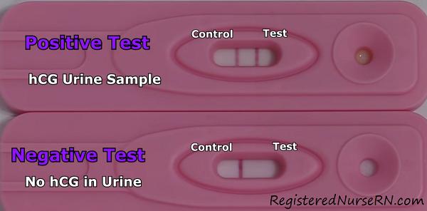 positive pregnancy test result, negative pregnancy test, read pregnancy test results