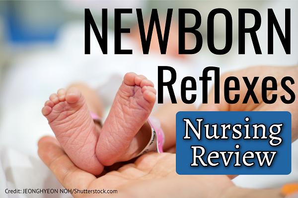 newborn, infant, reflexes, primitive, nursing, nclex, quiz, questions