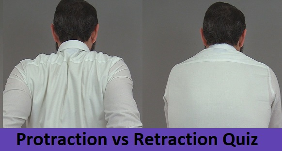 protraction retraction quiz, protraction vs retraction, anatomy quiz