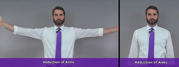 arm abduction, arm adduction, shoulder adduction, shoulder abduction, anatomy