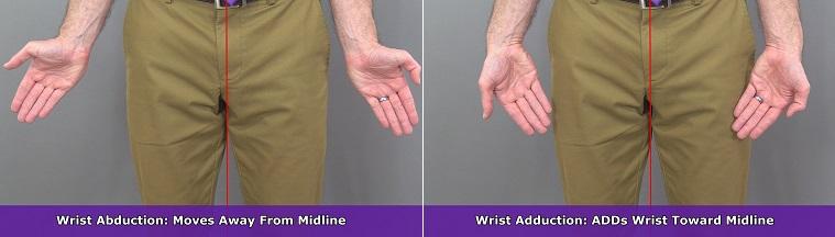 wrist adduction, wrist abduction