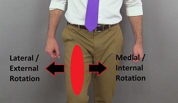 thigh rotation, hip rotation, leg rotation